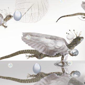 "Postkarte ""Drachen II"" - Ilona Reny"