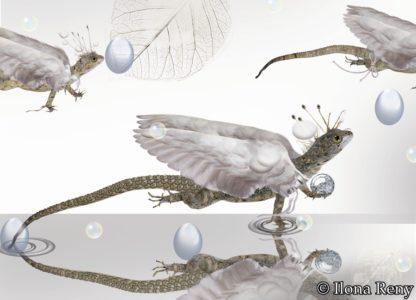 "Postkarte ""Drachen II"" Art.Nr.: P 09"