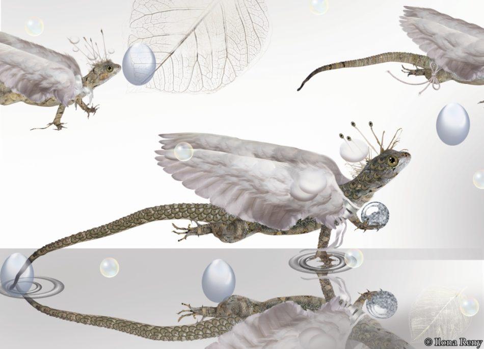 """Postkarte """"Drachen II"""" Ilona Reny 3 Drachen mit weißen Flügeln auf weißem Hintergrund"""