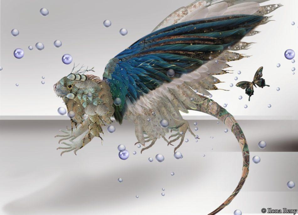 "Postkarte ""Drachen V"" Dragon 5 by Ilona Reny. This dragon has large blue/green wings"