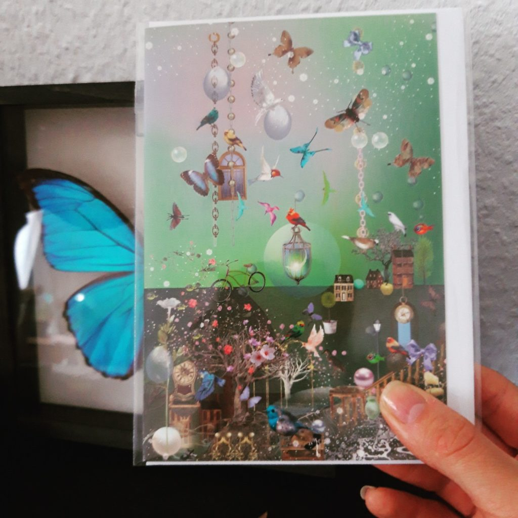 Grußkarten Ilona Reny: Schmetterlinge und Vögel auf grünem Hintergrund